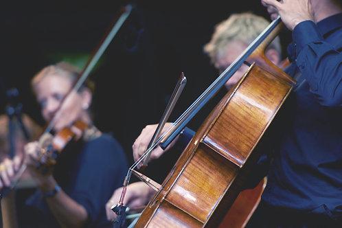 Beginning Cello/Bass Supply Kit