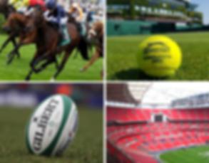 Sporting events near Hampton Court