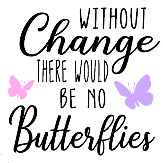 K6-without change, no butterflies