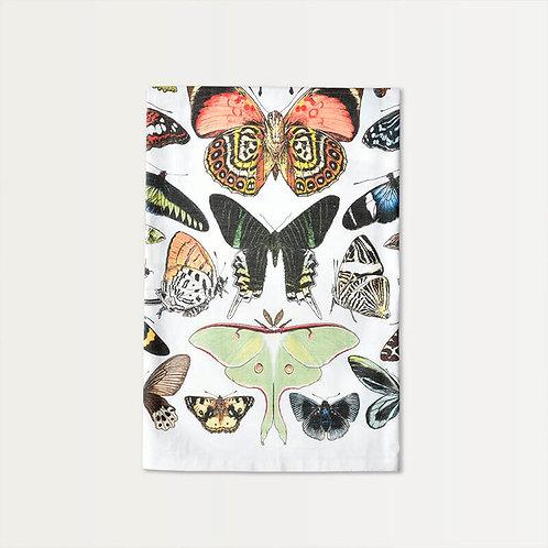 Papillon Specimen Cotton Towel