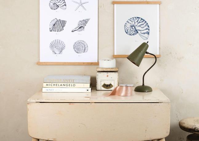 ArtPrints_Seashell.jpg