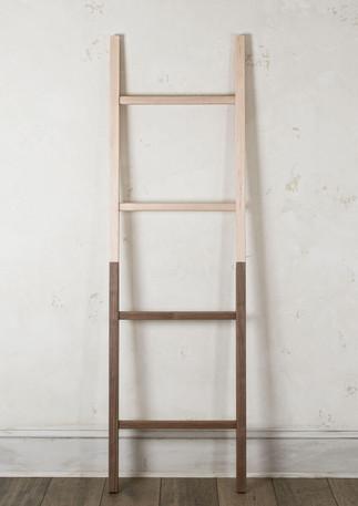 Ladder-HalfHalf.jpg