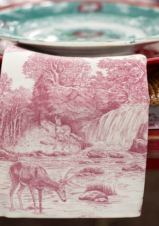 Placesetting-Toile.jpg
