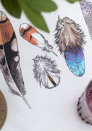 Tablerunner-Feathers.jpg