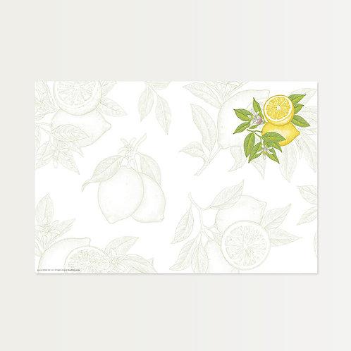 A Touch of Lemon Paper Placemats