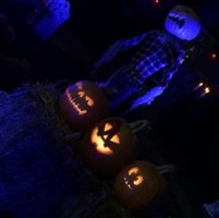 halloweenvid.MOV