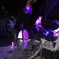 halloween8_edited.jpg