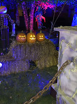 halloween13_edited.jpg