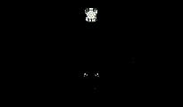 leeds rebound logo.png
