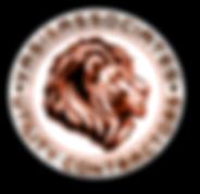 Vasi logo.png
