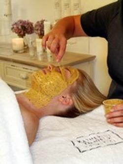 Skin Perfecting Anti Oxidant Facial