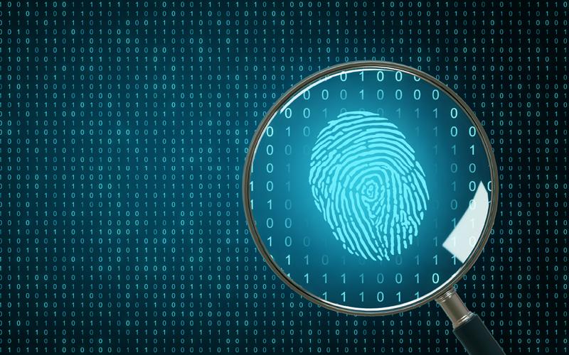 Magnifying digital thumbprint
