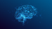 Researchers are learning how cognitive training impacts the brain