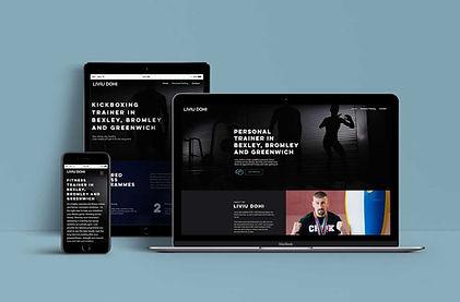 Web-Showcase-liviu-dohi.jpg
