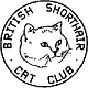 cat club.png