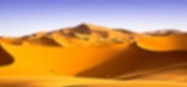 Sweeping Dunes.jpg