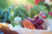webpage-fruites-veggie-basket.jpeg