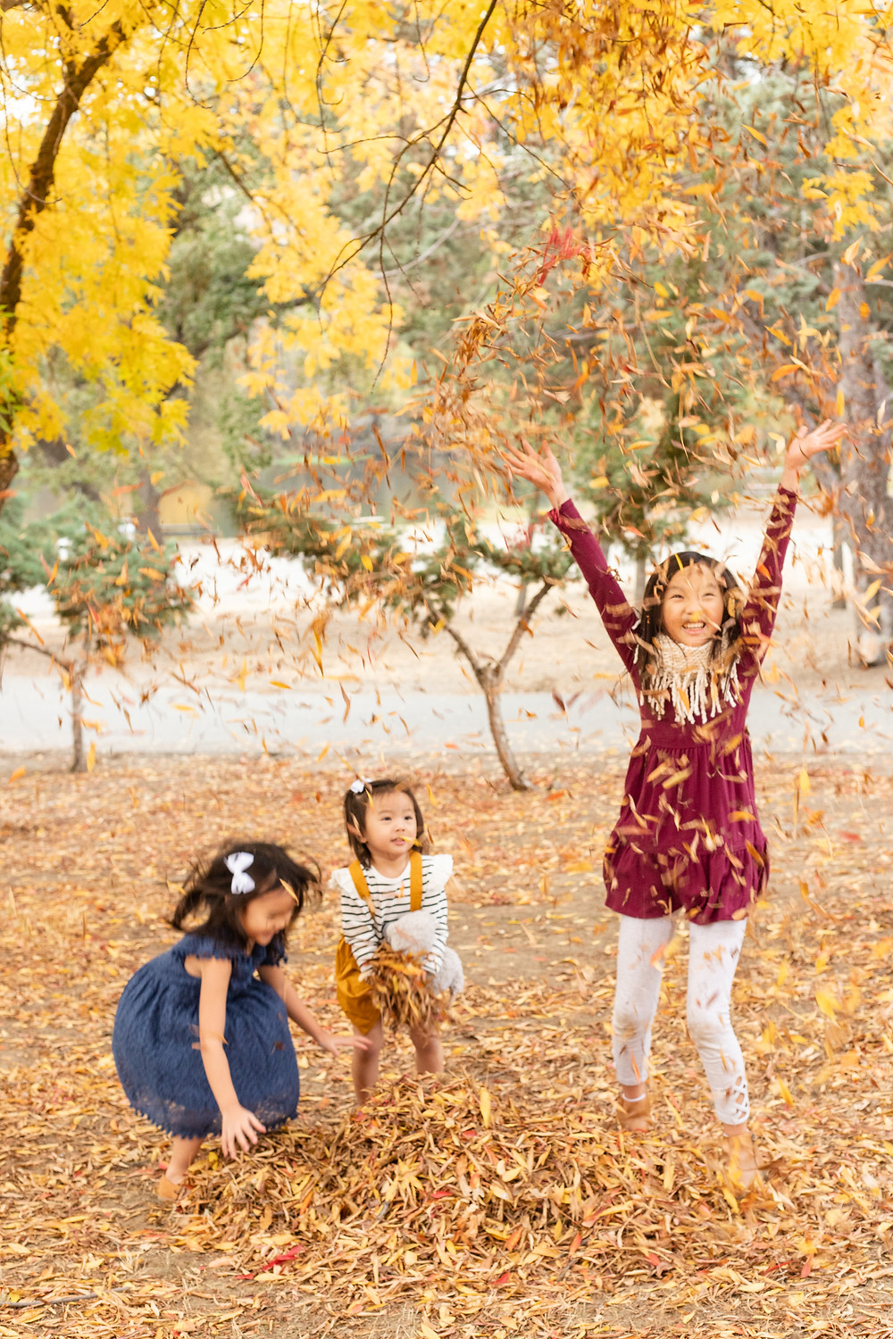 A family portrait session by Ashley Norton Photography in Fresno, California..