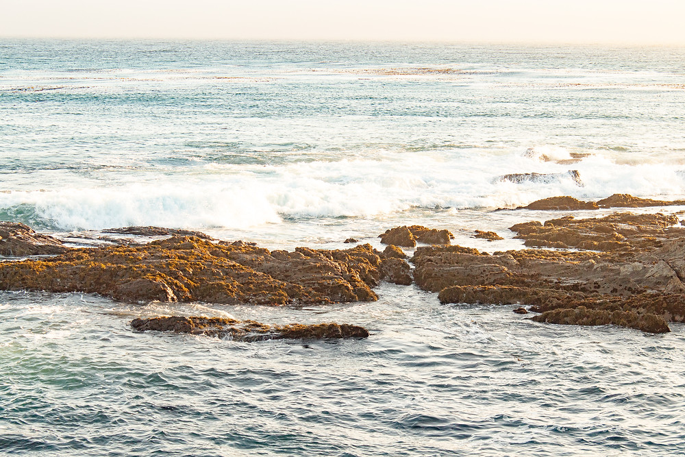 A scene landscape portrait of a beach in San Simeon, California.