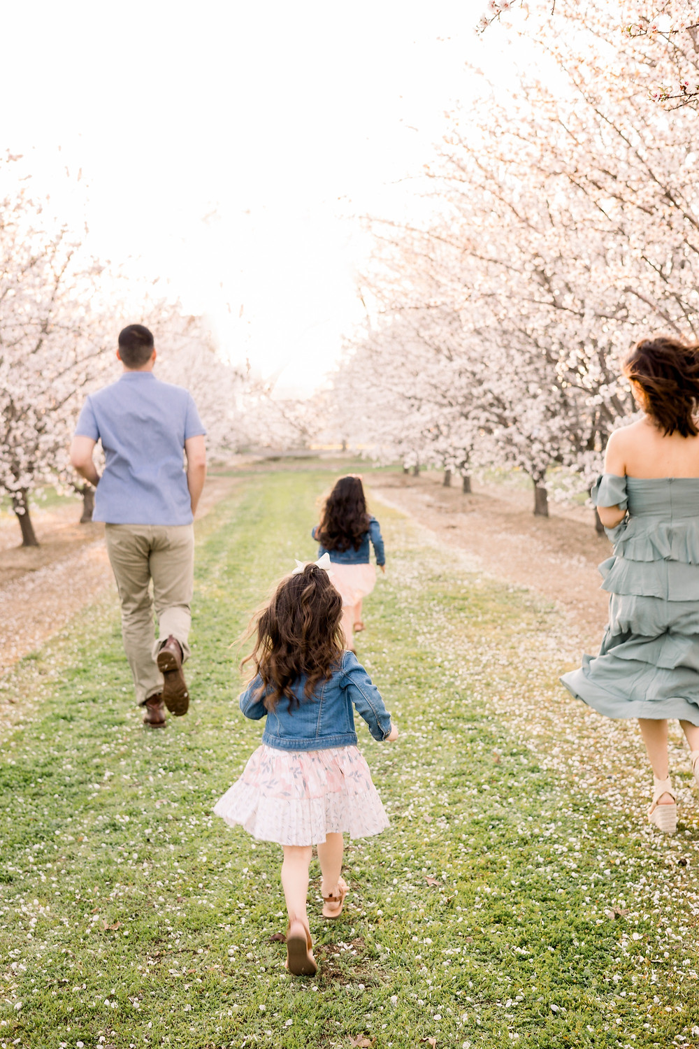 Central Valley family photographer Ashley Norton Photography in blossom