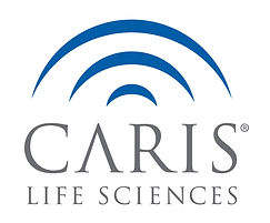 CarisLS_Color_Primary_Logo.jpg