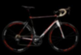 Daigle Cycle DL