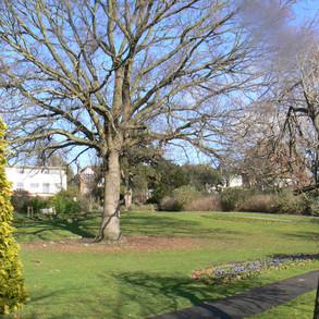 Holland Garden Newsletter photos 2012 00