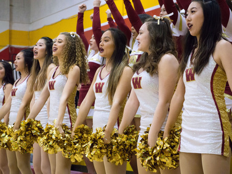 Administration to terminate Song team