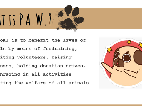 Promoting Animal Welfare (PAW) hosts first meeting of the year