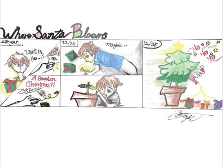Where Santa blooms