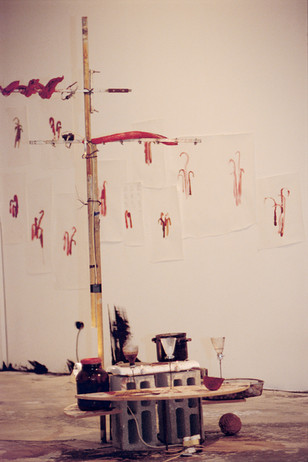 'Antenna and Muscle Birds', 2002