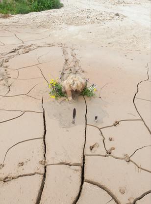 zib-mud_100cm.jpg