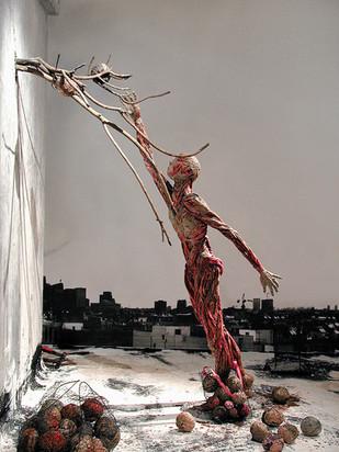 'The Picker', 2002