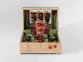 2016_DeadSwan_dunner_kabab_jewelry _box.