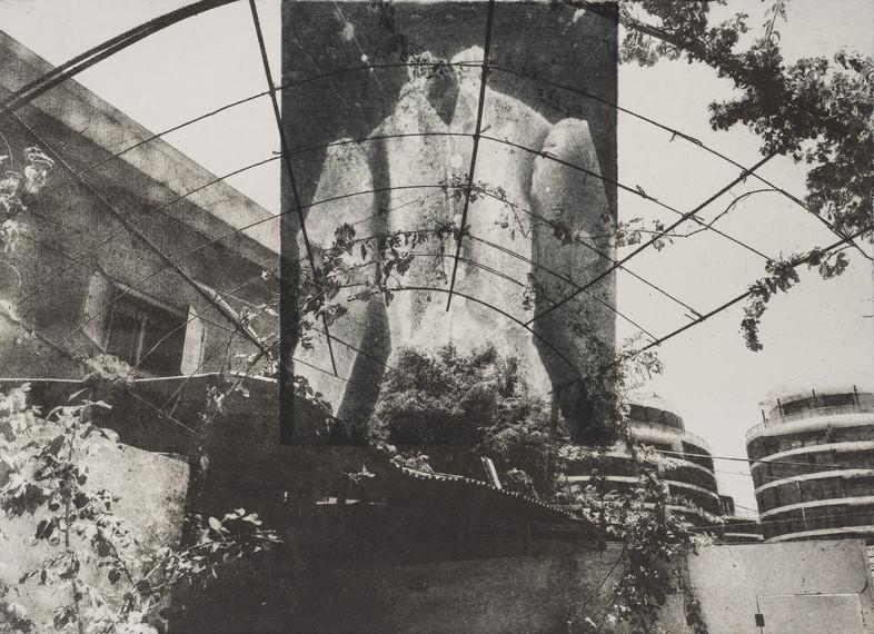 yfp-020.jpg