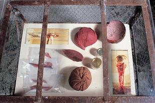 'Display Cabinet', 2002