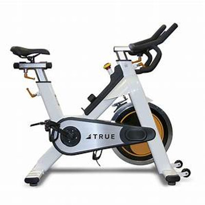 TRUE Fitness Indoor Cycling Bike