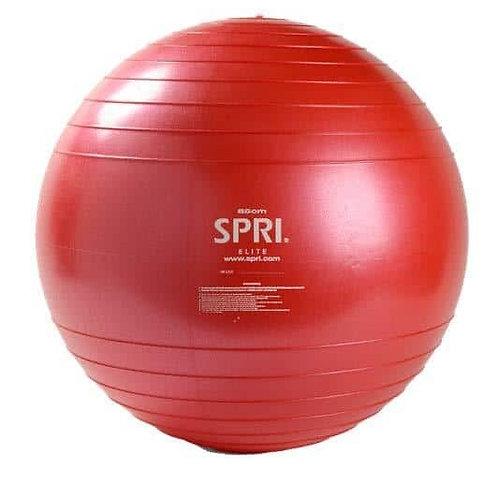 9Round Exercise Ball