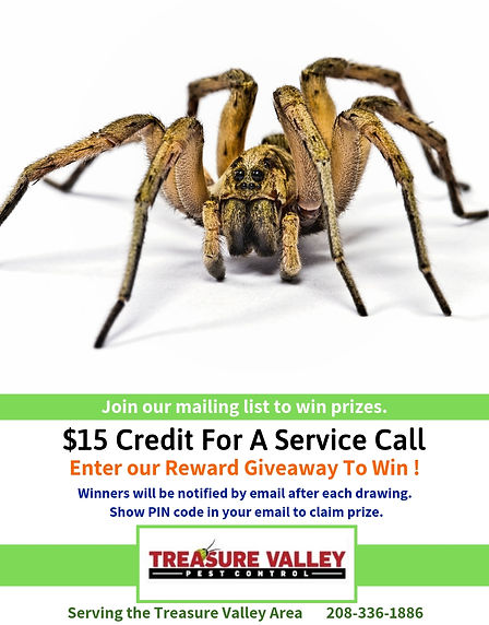 $15 Credit For service