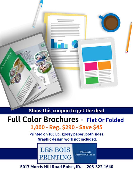 Full Color Brochures - Save $45