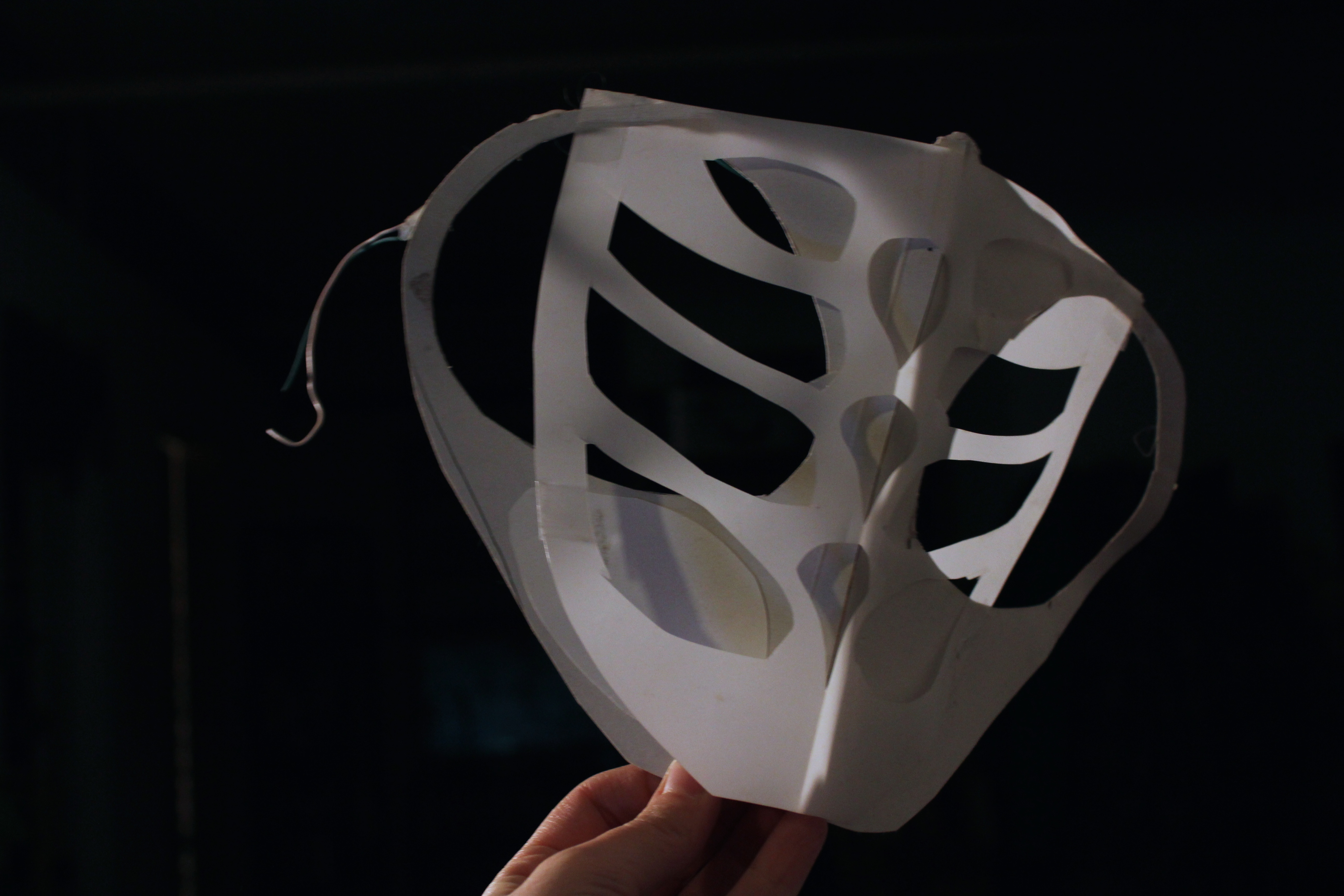 paper/vellum mask- Liz Kosack