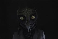 Black dragon - Liz Kosack