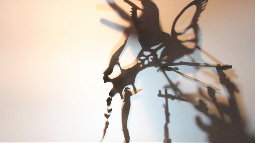 shadows - Liz Kosack