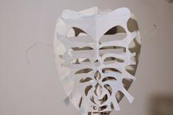 rib mask - Liz Kosack