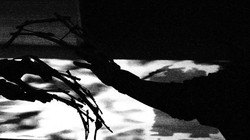 mech hands - Liz Kosack