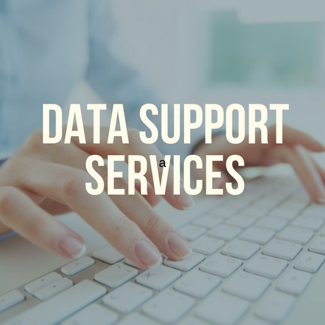 Data Support services (2).png