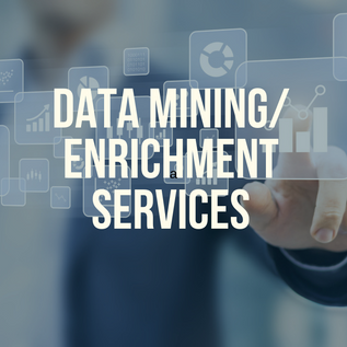 Data mining services (3).png