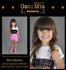 Composite Exclusivo Agencia - Alice Mart