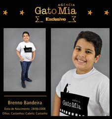 Composite Exclusivo Agencia - Brenno Bandeira_Baixa.jpg