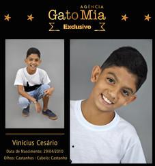 Composite_Exclusivo_Agencia_-_Vinícius_C